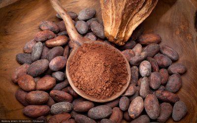 Schokolade – die süße Rohkost-Versuchung von Peter Dreverhoff