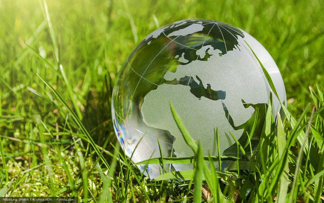 Food-Recycling schont Geldbeutel und Umwelt