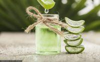 Grüner Saft mit Aloe Vera und Vogelmiere