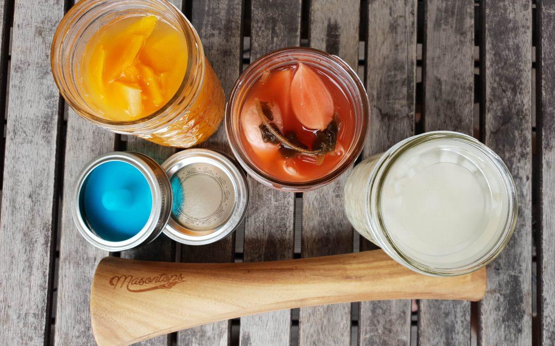Fermentieren mit Salzlake: Anleitung und Tipps von Boris Lauser